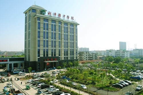 利辛县中医院