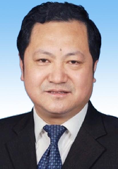 嵇振岭专家团队